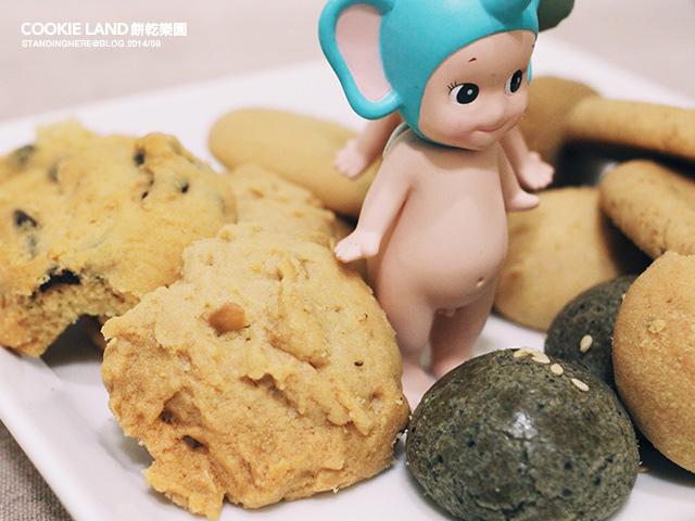 cookieland-7.jpg