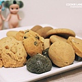 cookieland-9.jpg