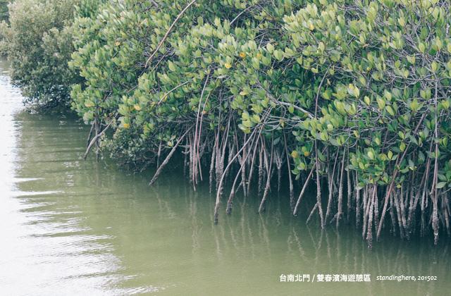 台南雙春-09