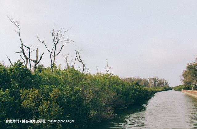 台南雙春-13