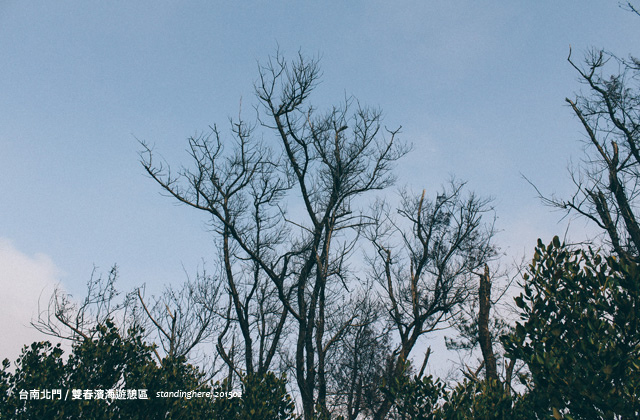 台南雙春-20