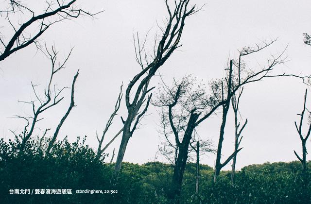 台南雙春-26