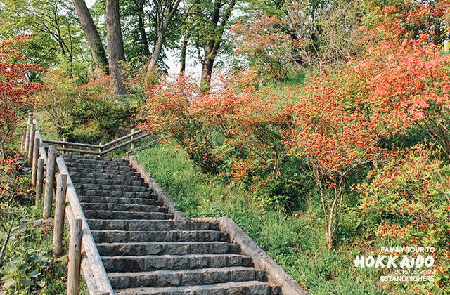 北海道支笏湖-48