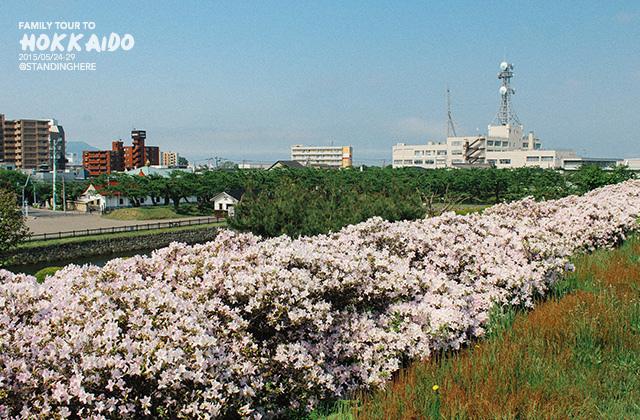 北海道-五稜郭-051