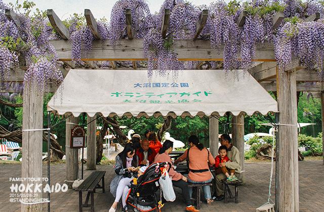北海道-大沼國定公園-116