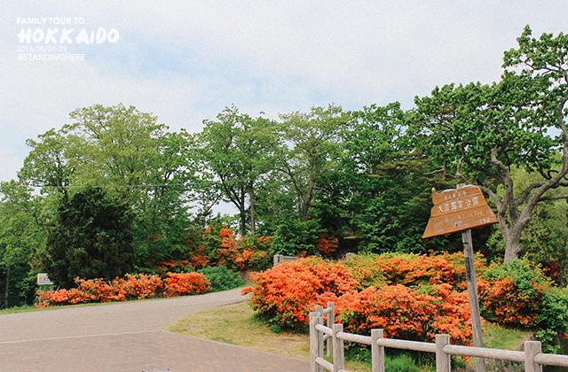 北海道-大沼國定公園-122