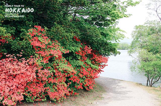 北海道-大沼國定公園-150
