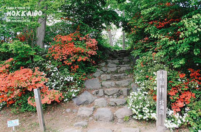 北海道-大沼國定公園-156