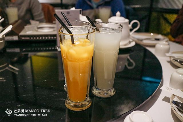 芒果樹mangotree-10