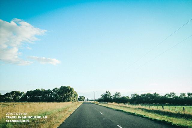 墨爾本旅遊-大洋路-1071
