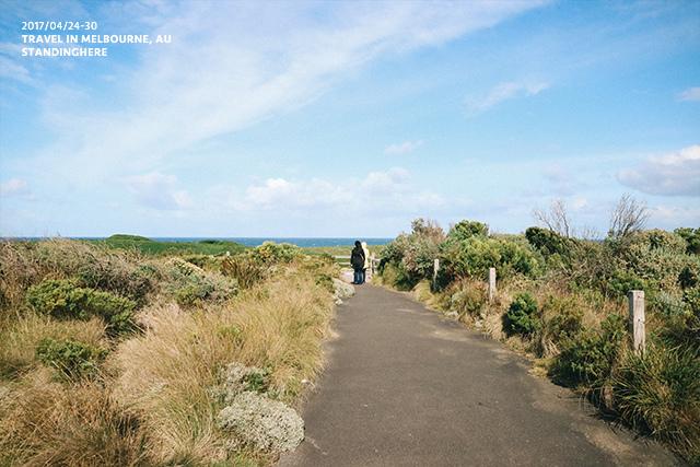 澳洲大洋路-2039