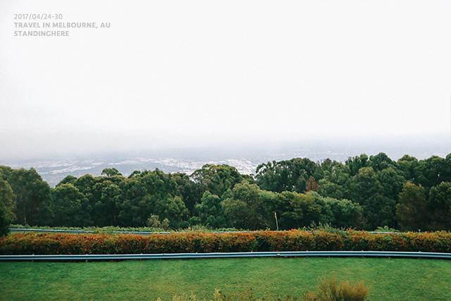 澳洲墨爾本-localtour-7004