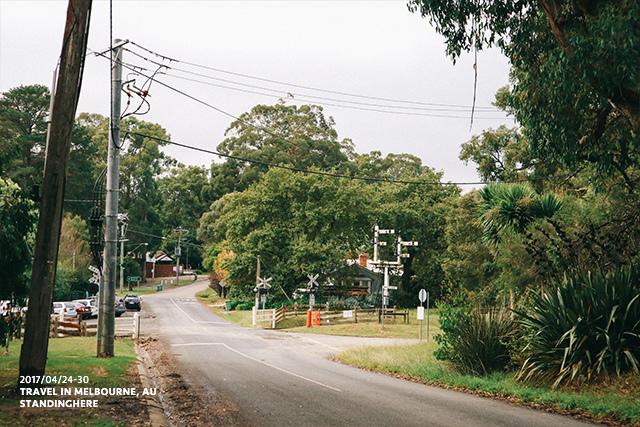澳洲墨爾本-localtour-7008