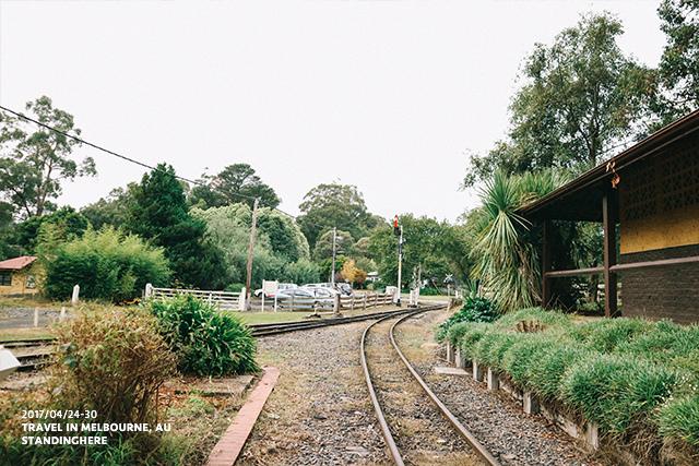 澳洲墨爾本-localtour-7012
