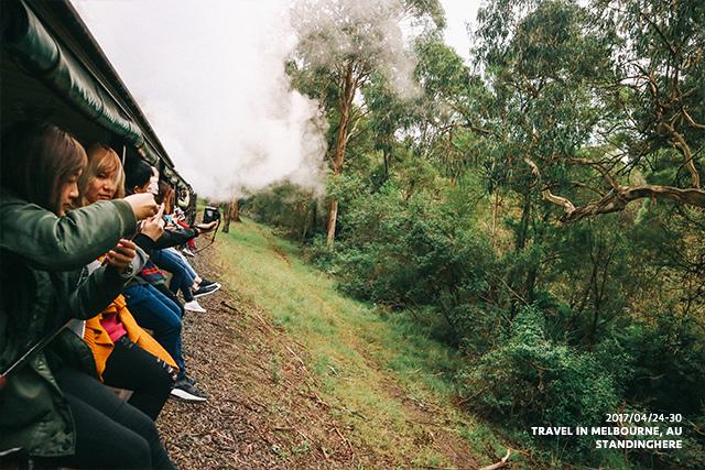 澳洲墨爾本-localtour-7021
