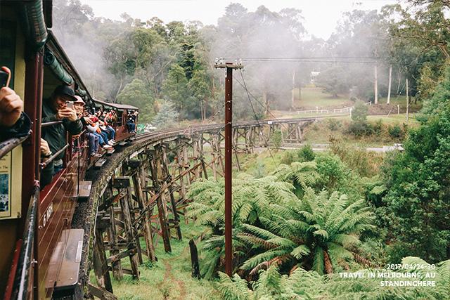 澳洲墨爾本-localtour-7032