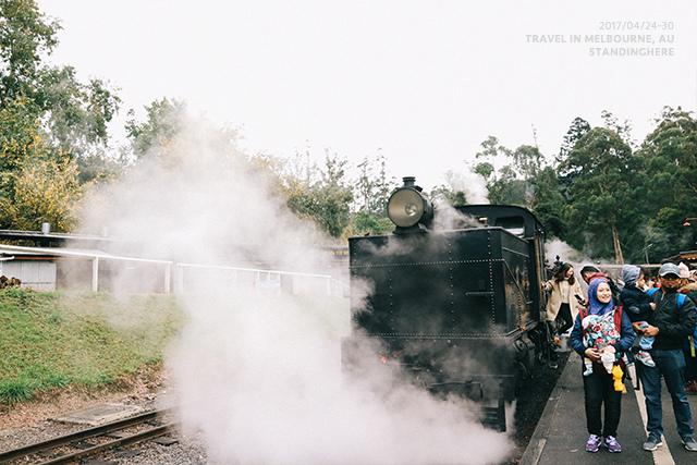 澳洲墨爾本-localtour-7035