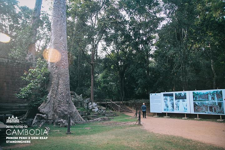 柬埔寨-暹粒-吳哥古蹟-d3-166
