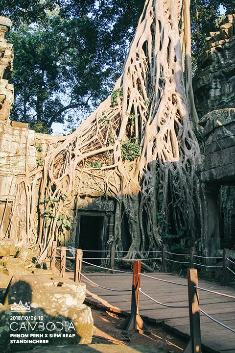 柬埔寨-暹粒-吳哥古蹟-d3-182
