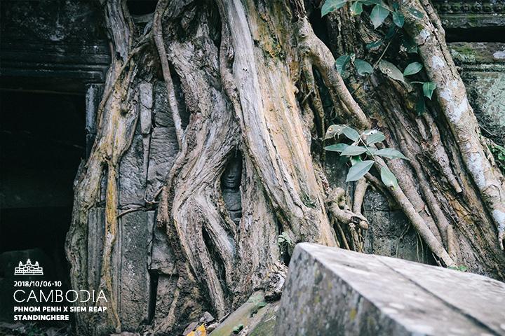 柬埔寨-暹粒-吳哥古蹟-d3-181