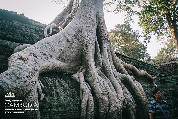 柬埔寨-暹粒-吳哥古蹟-d3-185