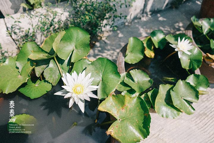 空叻瑪榮水上市場_684