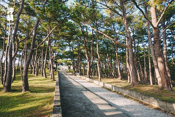 沖繩-座喜味城跡-6