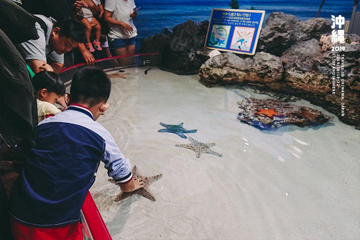 沖繩美麗海水族館-17