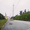 古宇利島-11