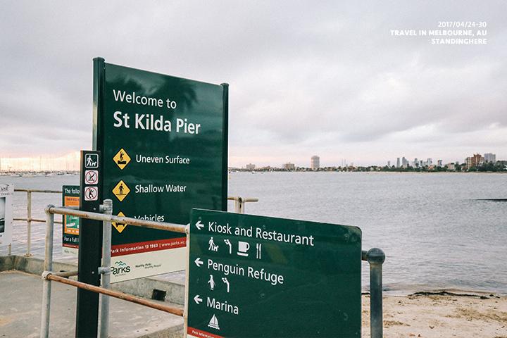 澳洲墨爾本_st.kilda企鵝_8190