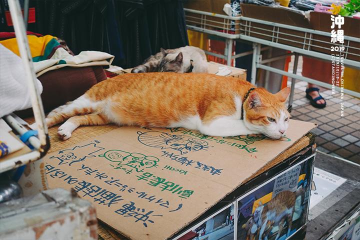 沖繩那霸-商店街-4-2-22.jpg