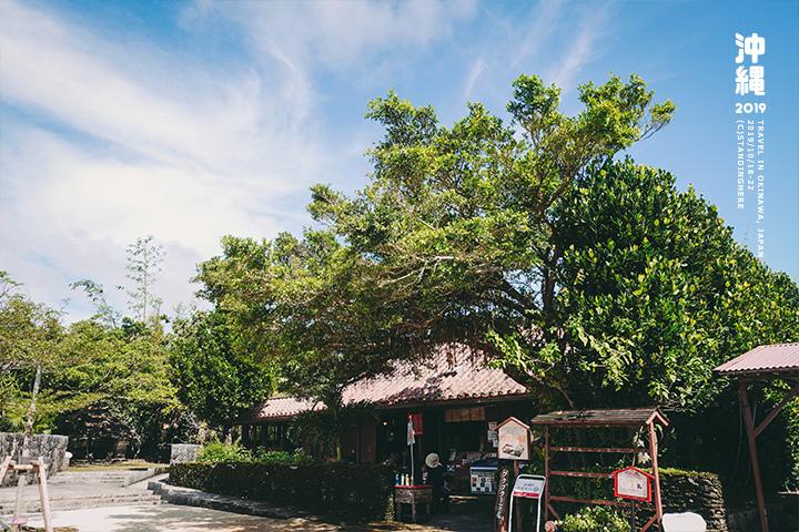 沖繩世界王國村玉泉洞-5-2-52