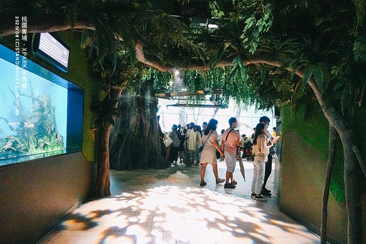 桃園青埔-XPARK水族館-34