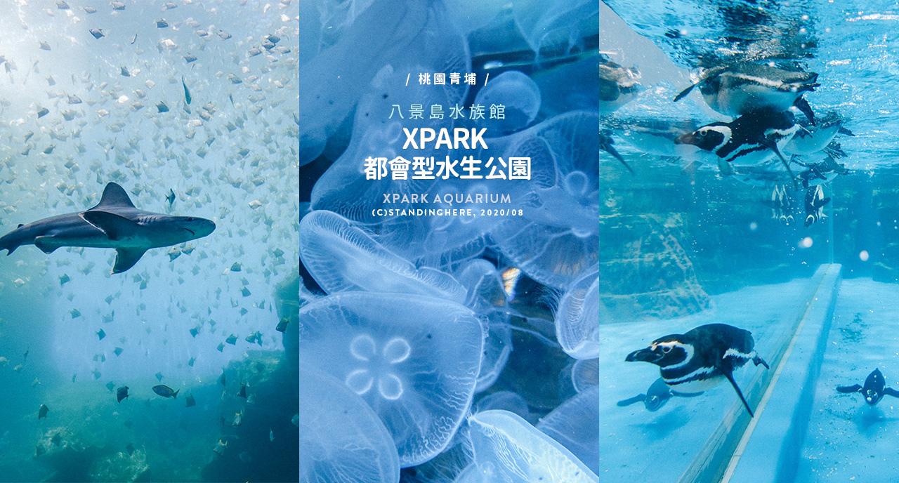 桃園青埔-XPARK水族館-banner