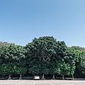 竹北鳳崎步道-2.jpg