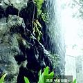 2009-0509-兒童樂園9.jpg