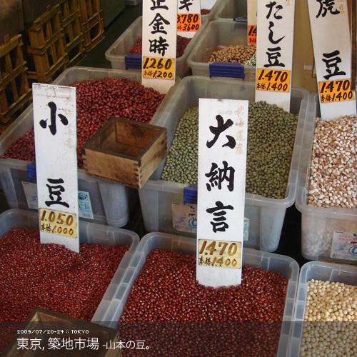 tokyo4-5.jpg