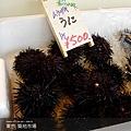 tokyo4-11.jpg