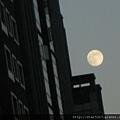月亮~某年的中秋夜攝自大安森林公園附近