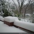 覆雪-6.jpg