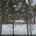 覆雪-2.jpg