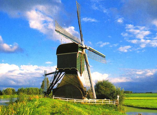 14荷蘭.jpg