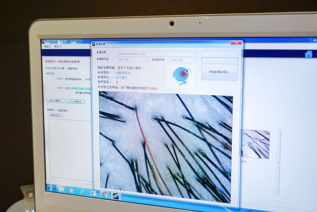 DSC08539.jpg
