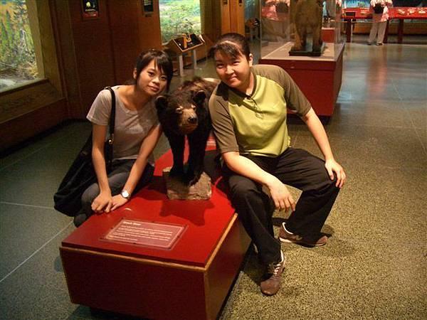 科學博物館-熊標本