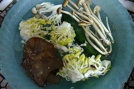 五行菇菇湯1.JPG