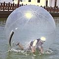 水上球.JPG