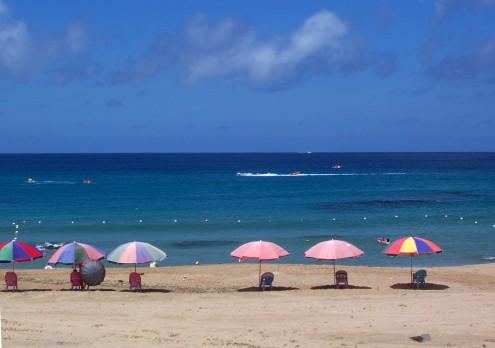 沙灘上的陽傘