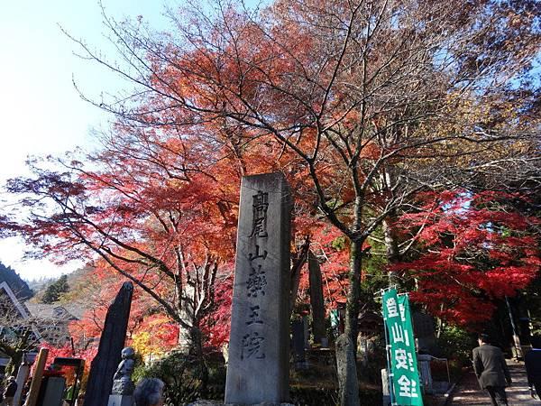 s高尾山17.JPG