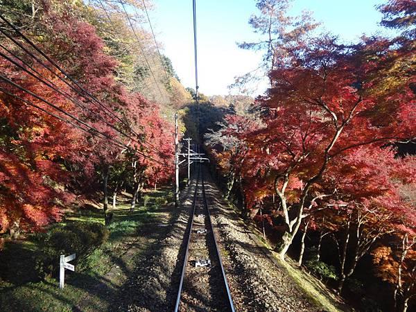 s高尾山76.JPG