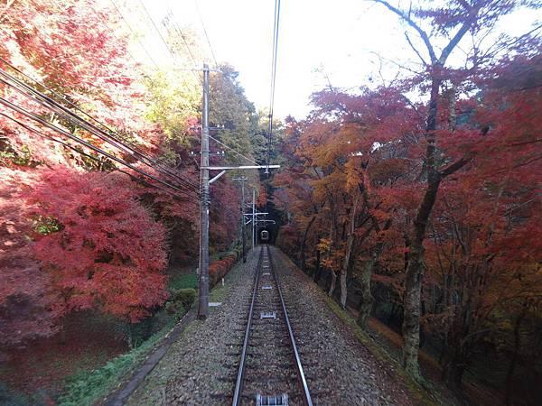 s高尾山79.JPG